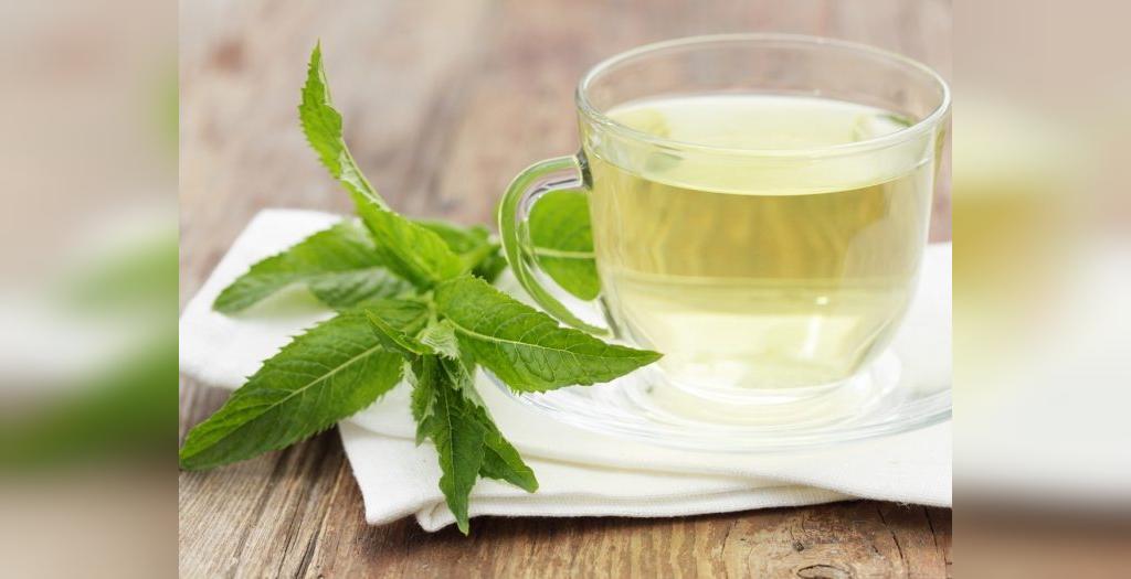 فواید و خاصیت چای و عصاره نعنا برای سلامتی، میگرن و کاهش وزن