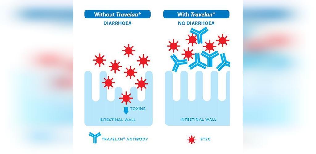 چگونه تراولن (Travelan) می تواند به درمان اسهال کمک کند؟
