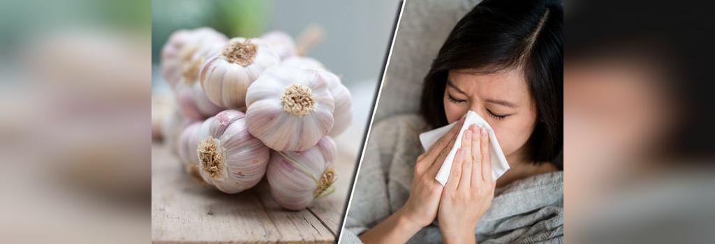 خواص سیر سرماخوردگی و آنفولانزا