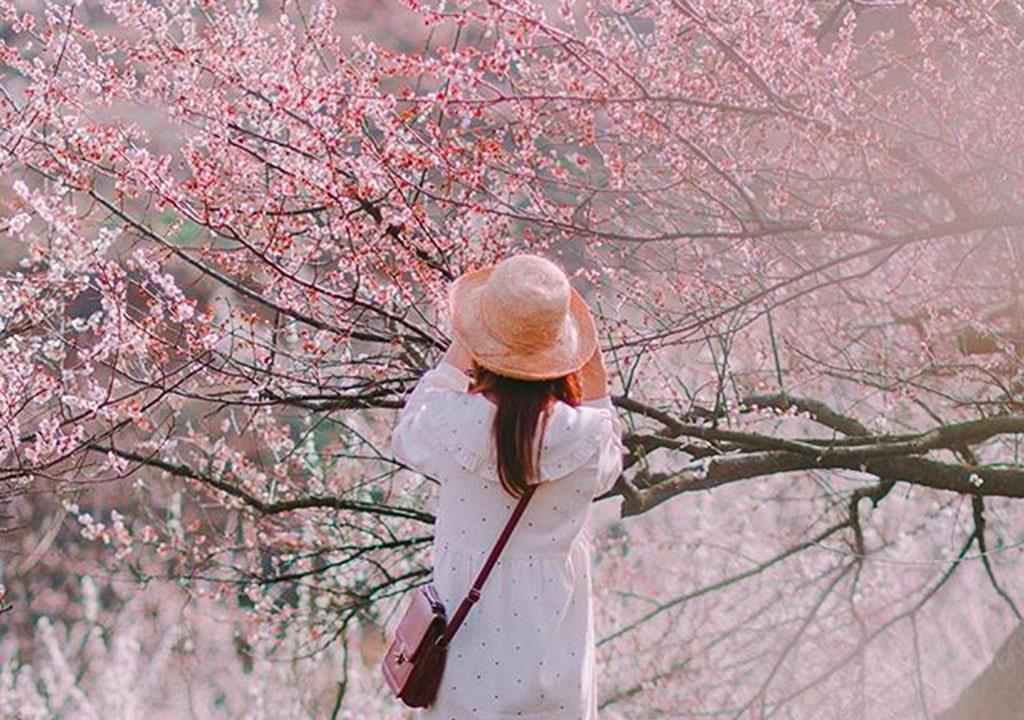 عکس بهاری خاص برای پروفایل دخترانه