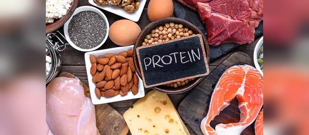 چه مقدار پروتئین مورد نیاز است