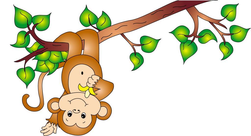 قصه میمون بی ادب برای کودکان
