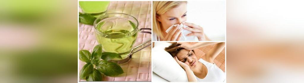 خواص چای نعنا برای کاهش نشانه های سینوسی