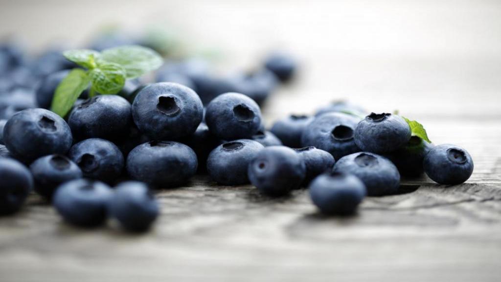 خواص تمشک آبی؛ بلوبری و فواید بی نظیر آن برای کاهش وزن و تنظیم قند خون