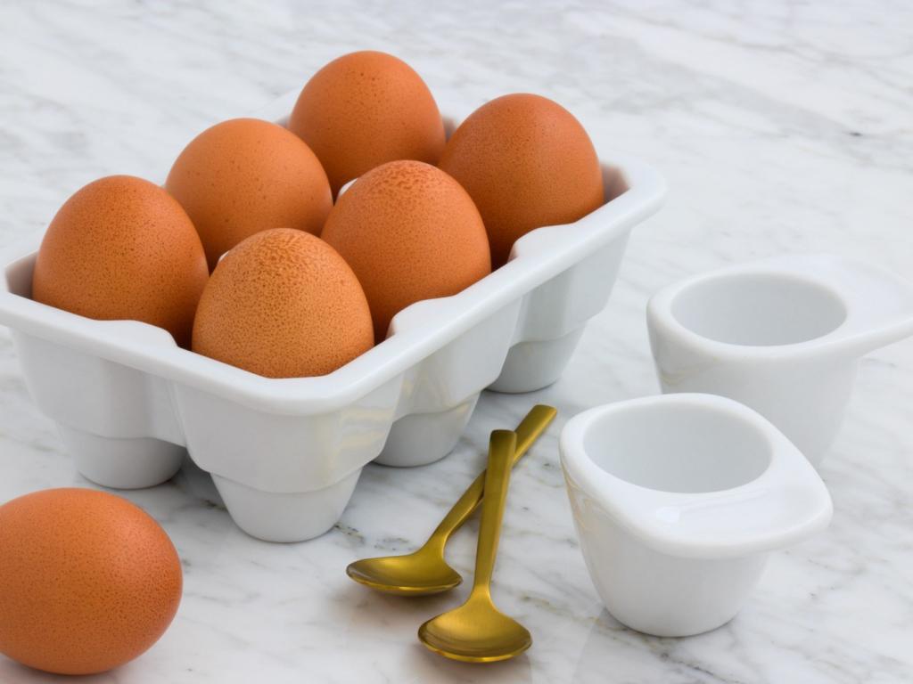 رژیم تخم مرغ چیست