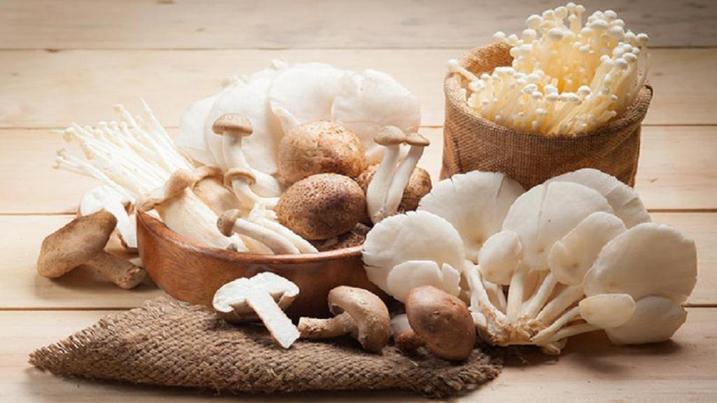 خوردن قارچ در دوران بارداری؛ فواید و انواع قارچ های مناسب و نامناسب در دوران بارداری