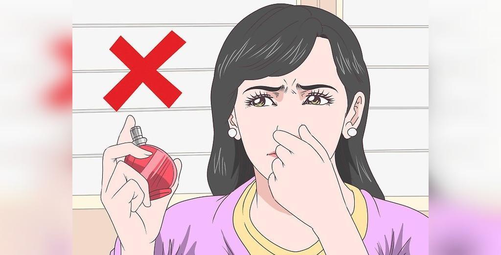 از بین بردن پشه ها در منزل و فضای بیرون