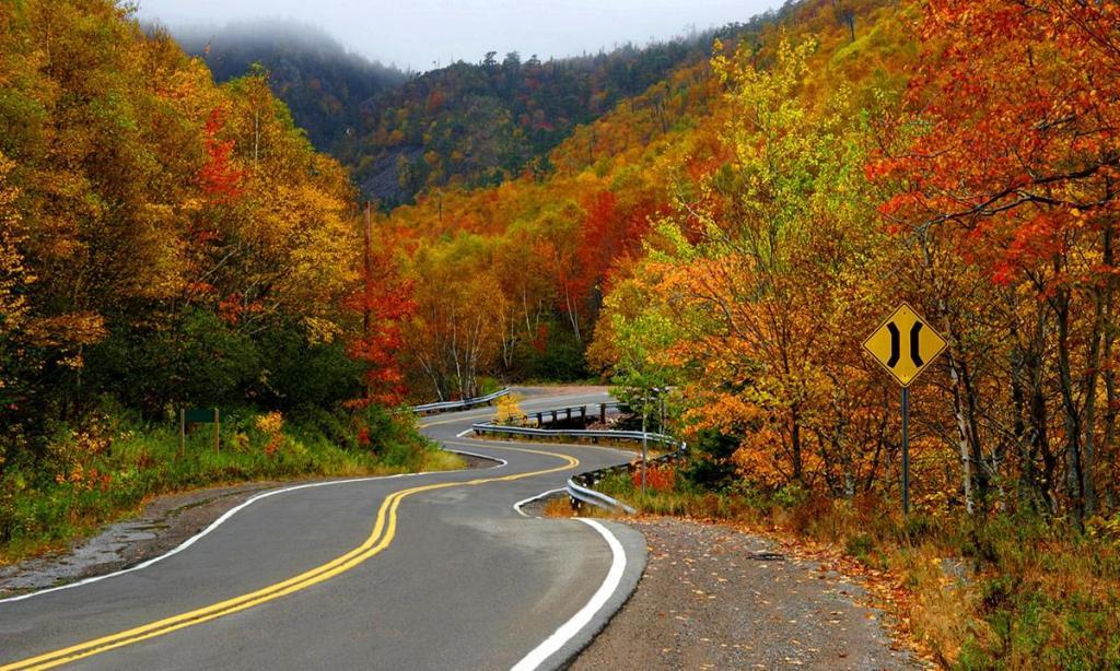 زیباترین و رویایی ترین جاده جهان