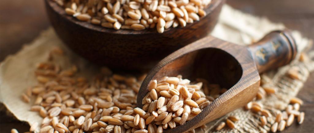 خواص برنج قهوه ای برای سلامتی: پیشگیری از سرطان