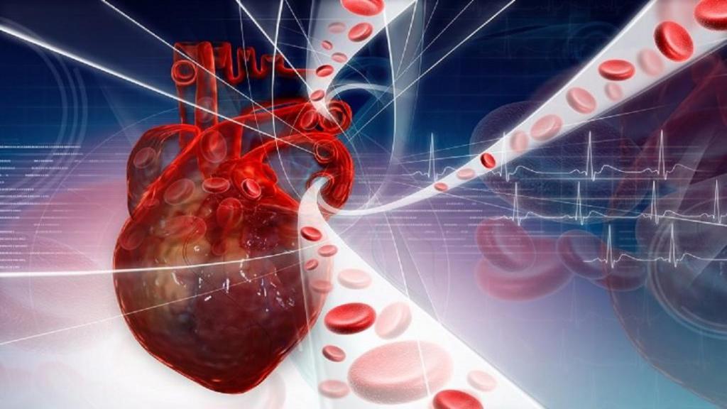 همه چیز درباره گردش خون ضعیف؛ نشانه ها، دلایل، راه های تشخیص و درمان آن