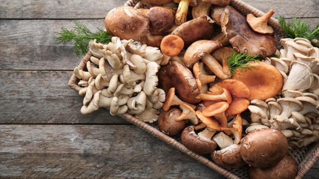 فریز کردن قارچ با بهترین روش ها و نحوه یخ زدایی قارچ فریز شده