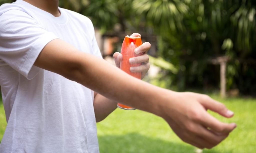 اسپری ضد حشره برای کمپینگ