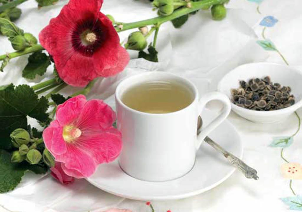 چای گل ختمی