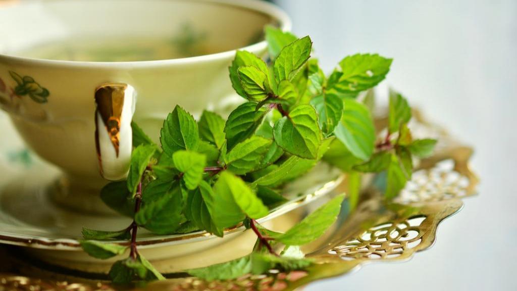 13 فایده چای نعنا برای سلامتی، درمان مشکلات گوارشی، کاهش استرس و بهبود خواب از دیدگاه علمی