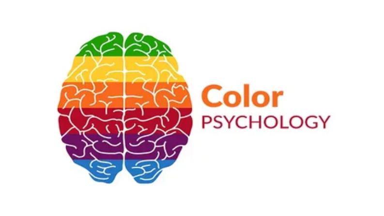 روان شناسی رنگ ها: تاثیر رنگ بر روحیه، افکار و احساسات افراد