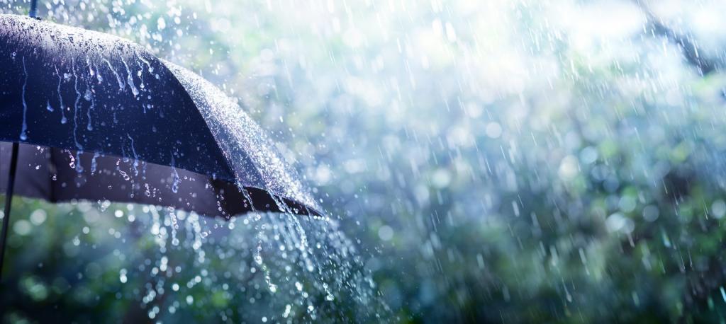انشا درمورد باران همراه با بند مقدمه
