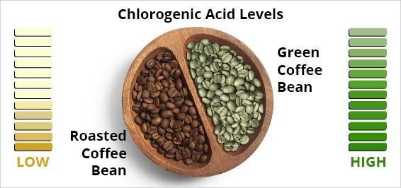 مضرات قهوه سبز