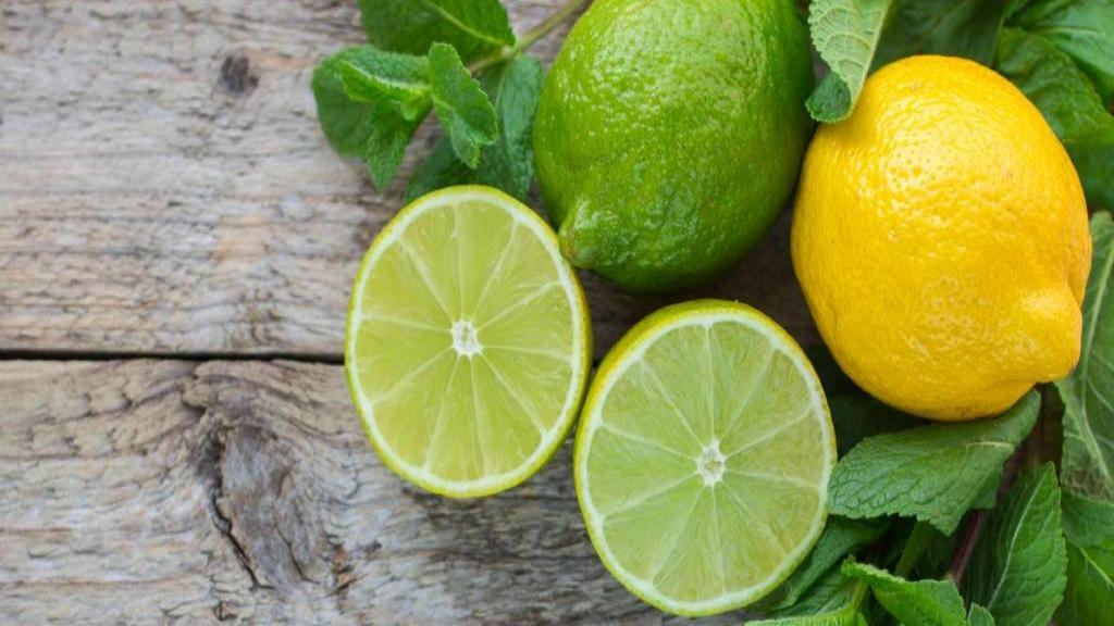 خواص لیمو ترش و لیمو شیرازی برای سلامتی؛ شباهت و تفاوت بین آنها