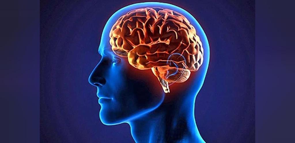 چگونه مغز انسان به بی عدالتی پاسخ می دهد؟