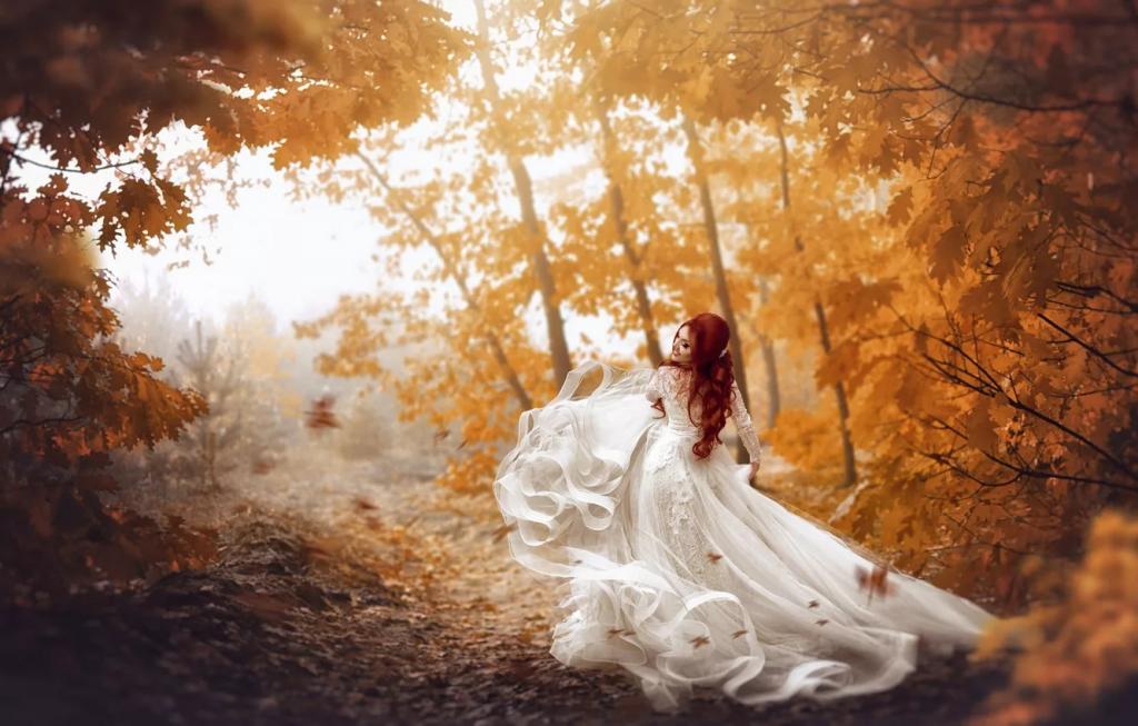 عکس خاص و هنری پاییزی در جنگل عروس