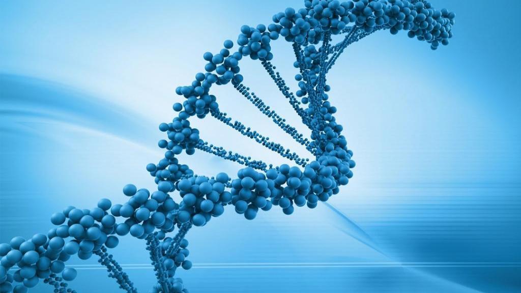مهندسی ژنتیک چیست + 25 مورد از مزایا و معایب اصلاح ژنتیک