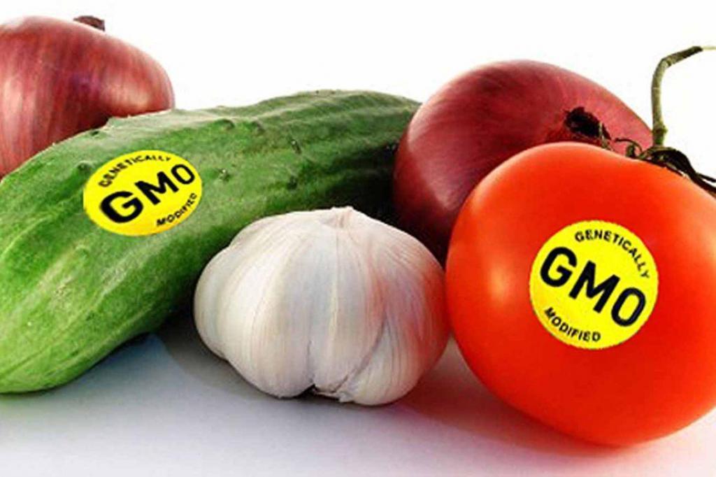 مفهوم تراریخته (GMO) از کجا آمده است؟