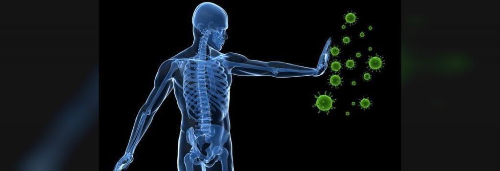 مزایای چای نعنا در بهبود سیستم ایمنی بدن