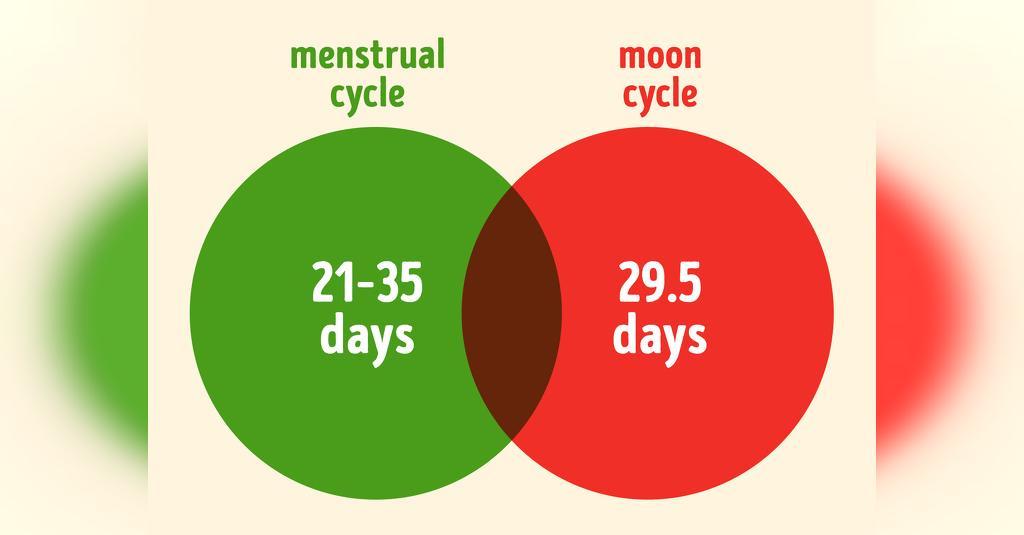 سوالات دوره قاعدگی: چند ماه دچار قاعدگی نشدن طبیعی است؟