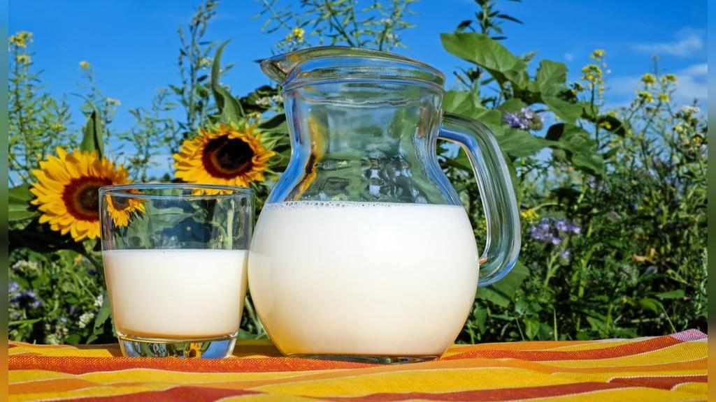 جوشاندن صحیح شیر + روش جوشاندن شیر در مایکروویو