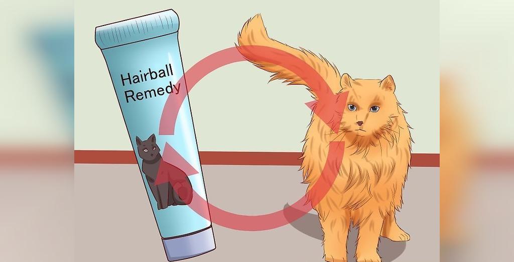 درمان هربال (انباشته بدن مو در معده) در گربه