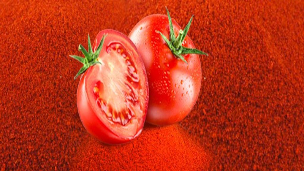 طرز تهیه پودر گوجه فرنگی با استفاده از پوست گوجه + نحوه مصرف آن