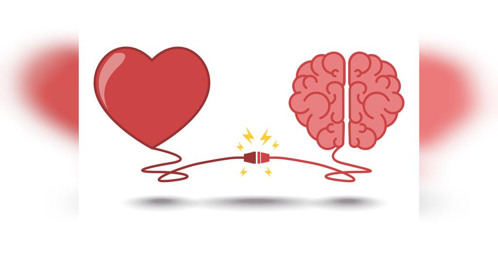 تاثیر رتبطه جنسی بر مغز