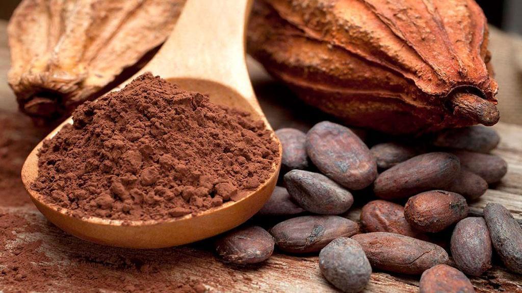 خواص کاکائو: 14 فایده کاکائو برای سلامتی، پوست + عوارض و مضرات آن