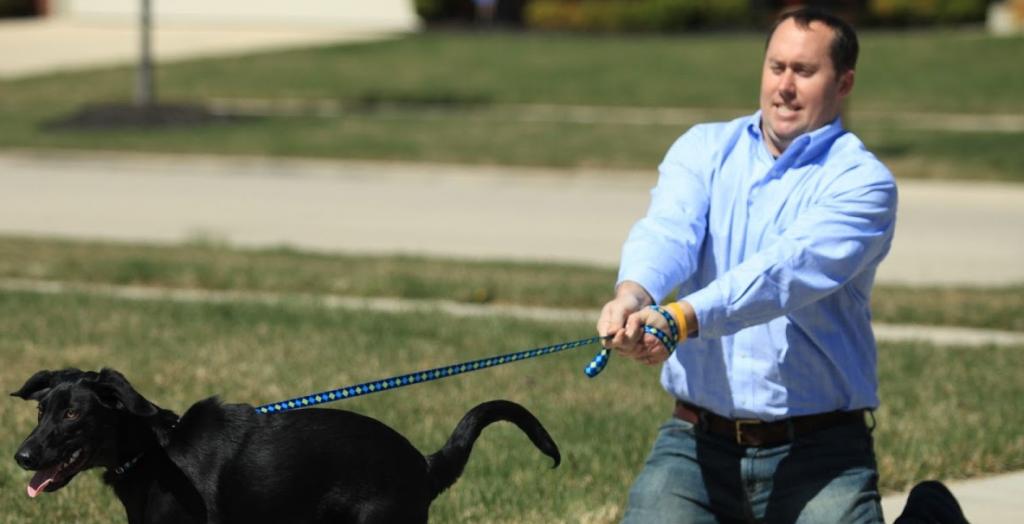 روش صحیح آموزش سگ با تنبیه