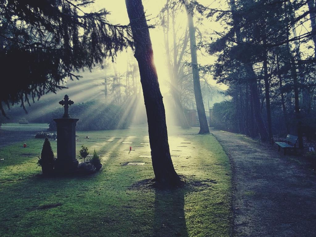 آرامش شب اول قبر