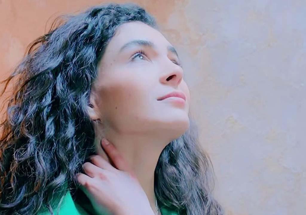 بیوگرافی ابرو شاهین