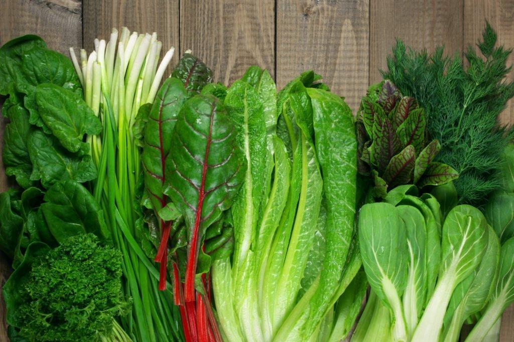 سبزیجات برگی مفید برای تقویت استخوان و کاهش درد مفاصل