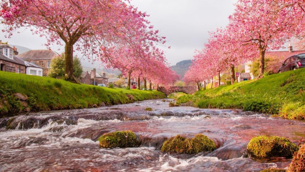 انشا در مورد فصل بهار با مقدمه و نتیجه گیری با زبانی ساده
