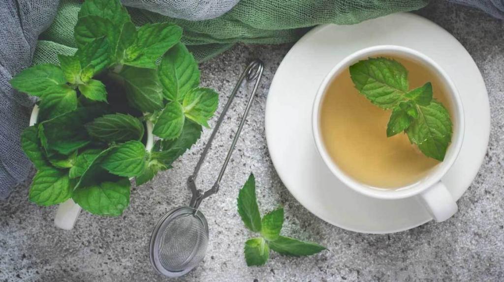 درمان سندرم پای بی قرار با چای نعنا